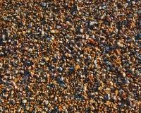 Pedras molhadas pequenas Imagem de Stock Royalty Free