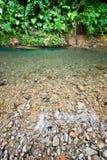Pedras na água Imagens de Stock Royalty Free