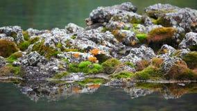 Pedras na água filme