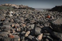 Pedras na costa fotografia de stock royalty free