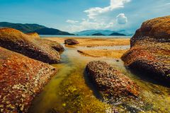 Pedras na costa do mar tropical fotos de stock