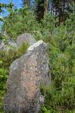 Pedras na linha da segunda guerra mundial, região da defesa de Leninegrado, Rússia fotos de stock royalty free