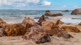Pedras na praia Fotografia de Stock Royalty Free