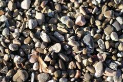 Pedras na praia Imagens de Stock