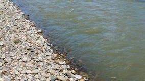 Pedras na praia e na água do mar vídeos de arquivo