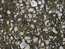 Pedras na terra fotografia de stock royalty free