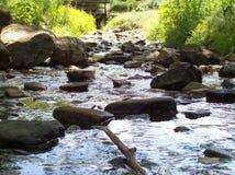 Pedras no córrego Fotografia de Stock