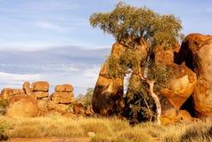 Pedras no interior australiano Os diabos marmoreiam a reserva da conservação de Karlu Karlu, Território do Norte, Austrália fotos de stock