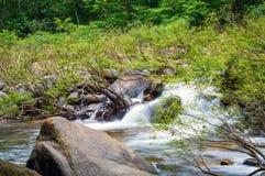 Pedras no rio da montanha na floresta Imagens de Stock