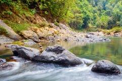 Pedras no rio da montanha na floresta Foto de Stock Royalty Free