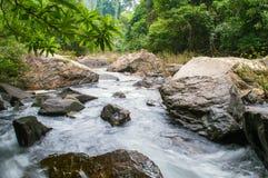 Pedras no rio da montanha na floresta Fotos de Stock Royalty Free