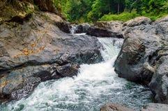 Pedras no rio da montanha na floresta Imagens de Stock Royalty Free