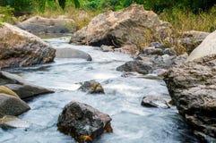 Pedras no rio da montanha na floresta Fotografia de Stock