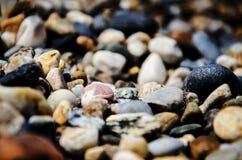 Pedras nos seixos da praia Fundo Fotografia de Stock