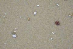 Pedras pequenas de várias cores na areia fotografia de stock royalty free