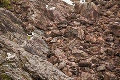 Pedras perto da central eléctrica hydroelectric Fotografia de Stock