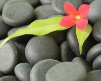 Pedras pretas Fotografia de Stock Royalty Free
