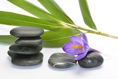 Pedras pretas do zen com açafrão de bambu do en no fundo branco vazio Foto de Stock