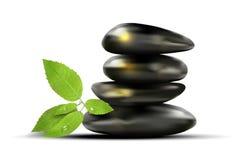 Pedras pretas e folhas verdes com orvalho-gotas Fotos de Stock Royalty Free
