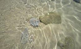Pedras subaquáticas Fotografia de Stock