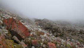 Pedras vermelhas na névoa Foto de Stock Royalty Free
