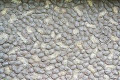 Pedregulhos arredondados do fundo cinza de pedra Imagem de Stock Royalty Free