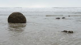 Pedregulhos de Moeraki nas ondas de Oceano Pacífico video estoque