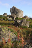 Pedregulhos do granito nos montes de Kola Peninsula, Rússia Imagens de Stock