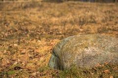 Pedregulhos enormes na grama amarela seca Imagem de Stock
