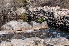 Pedregulhos na água e na parede da represa velha da missão Imagem de Stock