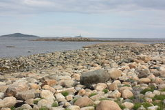 Pedregulhos na costa Imagens de Stock Royalty Free