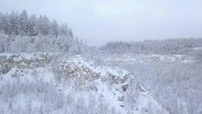 Pedreira coberto de neve nas madeiras vídeos de arquivo