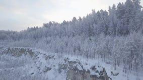 Pedreira coberto de neve nas madeiras filme