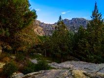 Pedriza& x27; s-Wälder und -berge Stockfotografie