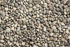 peeble πέτρες ανασκόπησης Στοκ Εικόνες