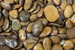 湿石头背景 免版税库存图片