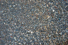 Peeble and stones. Surface of peeble  and stones Royalty Free Stock Images