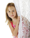 Peek Around the Curtain. Portrait of a pretty young elementary girl peeking from behind a lace curtain.  On a white background Royalty Free Stock Images