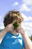 Peek-a-boo Stock Photos
