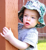 Peek a Boo Royalty Free Stock Photos