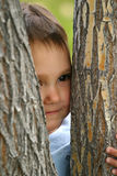 Peek A Boo. An adorable Latin American baby girl toddler playing peek a boo behind a pair of trees Royalty Free Stock Photo