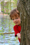 Peek a boo. Boy playing behind a tree Stock Images
