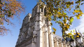 Peek a Boo to Notre Dame!. Low angle view of the famous Cathedral of Notre Dame with the branches of the treas showing in the foreground in Paris, France Royalty Free Stock Image