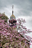 Peek Chapel With Magnolias Royalty Free Stock Photo