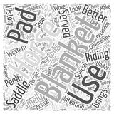 A Peek into The History of Horse Blankets word cloud concept  background. Text Royalty Free Stock Photos