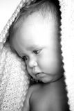 Peekaboo. Black and white image of a toddler peeking out from under a blanket Royalty Free Stock Photos