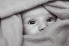 Peekaboo. Photo of a baby peeping out from a blanket stock photography