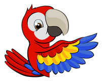 Peeking Cartoon Parrot Stock Photos