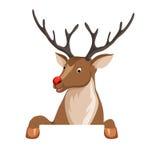 Peeking cartoon reindeer Stock Images