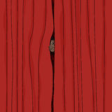 Peeking From Curtain Stock Image